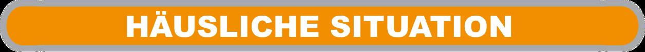 """orangefarbene Fläche mit weißer Beschriftung """"häusliche Situation"""""""